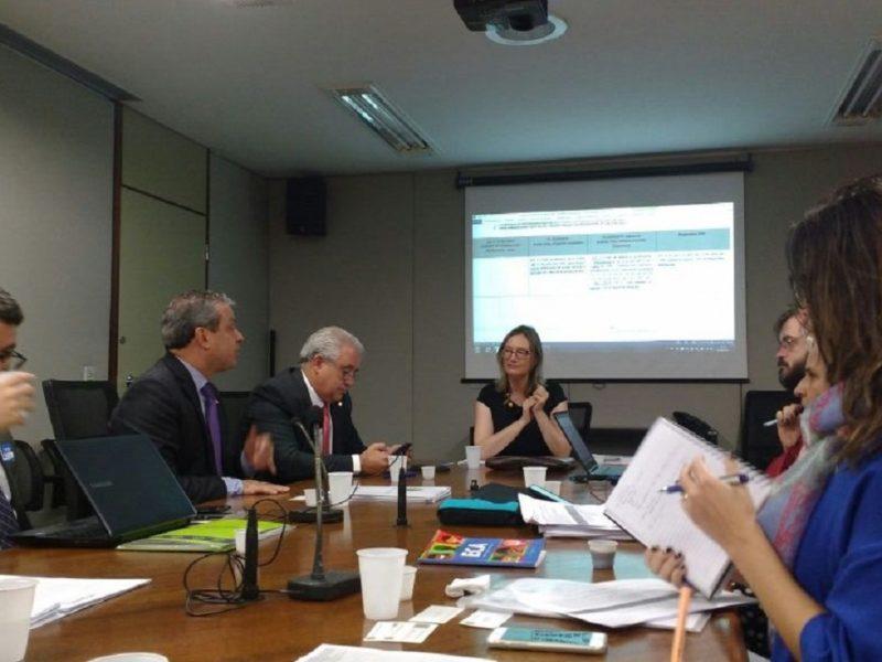 Reunião sobre projeto de adoção. Foto: Júlia Lanz