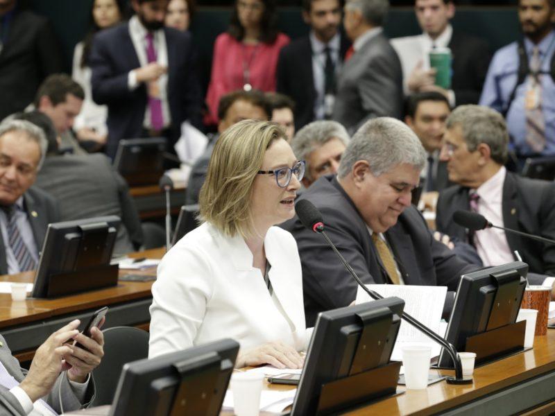 Maria do Rosário na CCJ (Foto: PT na Câmara)